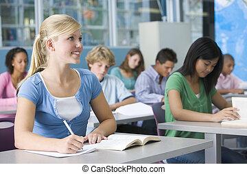 studenti, studiare, classe, geografia