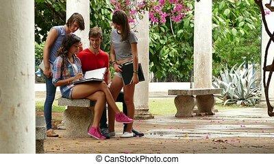 studenti, studiare, Parlare, università, divertimento,  4-group, detenere