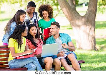 studenti, studiare, università università