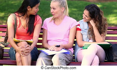 Students chatting together outside on a bench