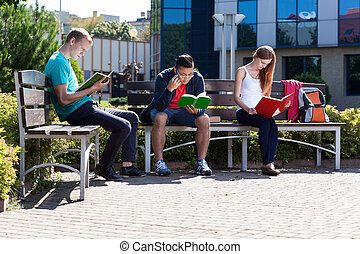 Students learning on a bench