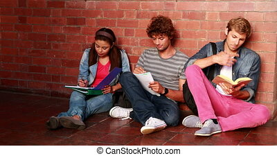 Students sitting against wall reading textbooks at the...