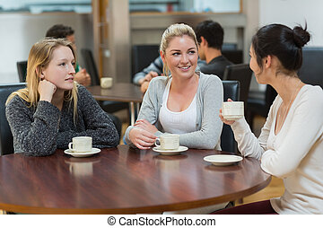Students talking together in coffee shop - Students talking...