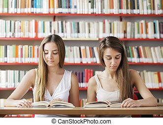 studera, in, den, bibliotek