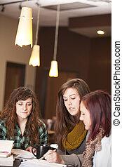 studeren, bijbel, jonge, vrouwen