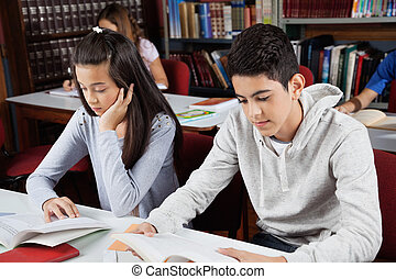 studieren, buchausleihe, schulkinder