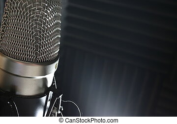 A studio condenser mic with acoustic sound foam in the background.