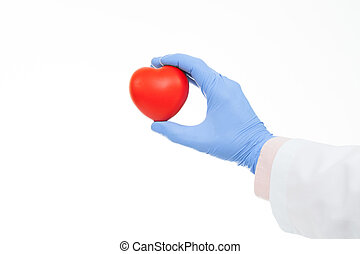 Studio shot of a doctor hand in a rubber glove holding heart shaped toy