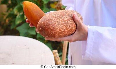 study of the development of cucumbers. Genetic Engineering....