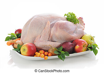stuffed turkey on white background