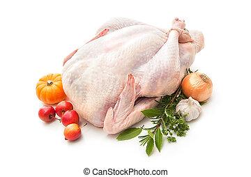 Stuffed turkey - Uncooked turkey with herbs isolated on...