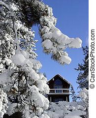 stuga, in, den, snö