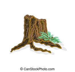 Stump old tree with ferns vector