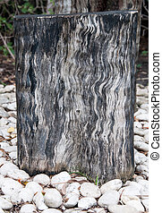 Stump with a stone surround