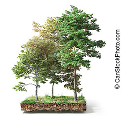 Stump with leaves isolated on a white. 3d illustration