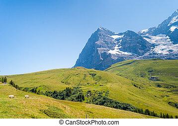 stunning Alpine panorama of Eiger peak. Grindelwald Bernese Alps Switzerland Europe