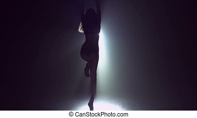 Stunning Dancer - Sexy outline of go-go dancer performing on...