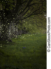 Stunning fantasy style landscape image of fireflies in night time forest scene