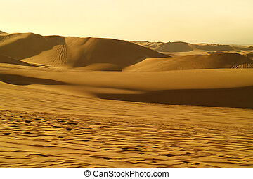 Stunning Golden Sand Dunes with Sand Ripples and the Wheel Prints of Dune Buggies, Huacachina Desert, Ica, Peru