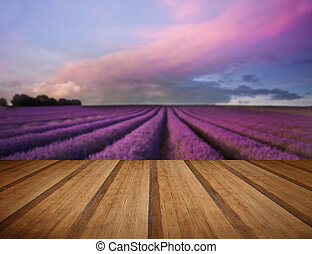 Stunning lavender field landscape Summer sunset with wooden plan
