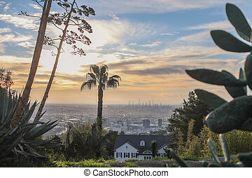 Stunning panoramic morning view of Downtown Los Angeles and Hollywood shot from Runyon Canyon, Hollywood Hills, California