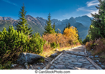 Stunning path to the Tatras in autumn at sunset