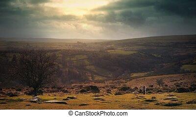 Stunning Rural Landscape Vista - Sunlight bursts through the...