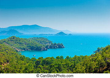 stunning seascape and pine forests on the mountains