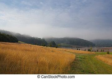 Stunning spring landscape in the mist