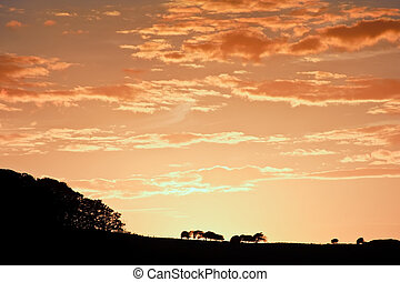 Stunning sunset sky with silhouette landscape horizon -...