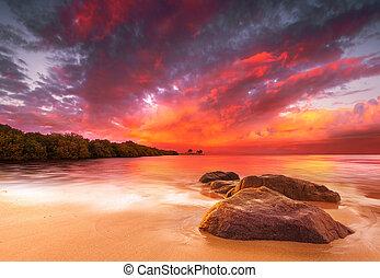stunning, tropisk, solnedgang