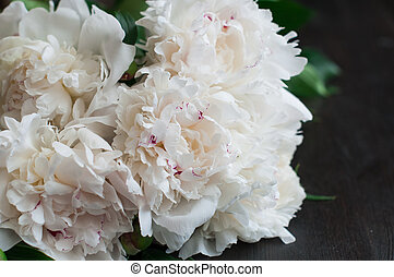 Stunning white peonies on rustic wooden background