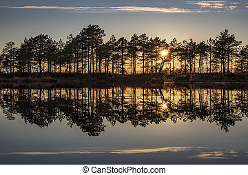 stunningly beautiful sunset view over a forest lake