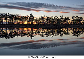 stunningly beautiful view of the evening sky over a forest lake