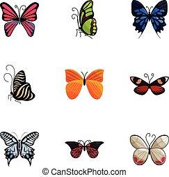 styl, barwny, ikony, komplet, motyle, rysunek