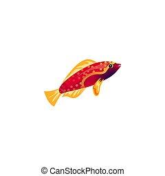 styl, fish, ilustracja, fin., wektor, żółty, rysunek, koral, płaski