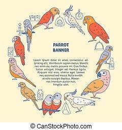 styl, pojęcie, barwny, papugi, kreska, chorągiew, okrągły