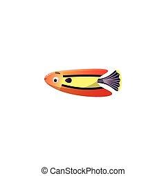 styl, raster, fish, ilustracja, rafa, fin., rysunek, czerwony, purpurowy, koral, płaski