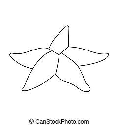styl, zwierzęta, illustration., seastar, symbol, odizolowany, tło., wektor, morze, ikona, biały, pień, szkic
