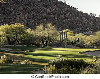 style, arizona, terrain de golf, co, désert