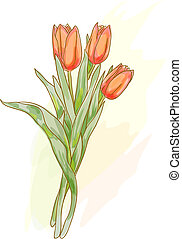 style., bouquetten, tulips., watercolor, rood
