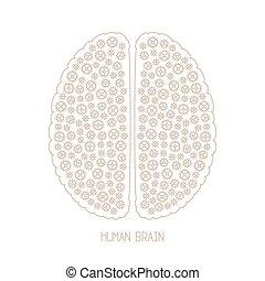style, concept, mono, créativité, cerveau, vecteur, mince, humain, ligne