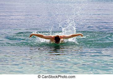 style., jonge, zee, man, eerlijk, zwemt, dolfijn