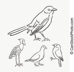 style, oiseau, animal, dessin