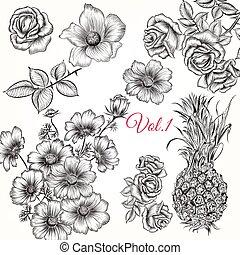 style, ou, fleurs, ensemble, gravé, collection, main, dessiné, beau