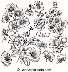 style, ou, fleurs, ensemble, gravé, collection, vendange, main, dessiné, beau