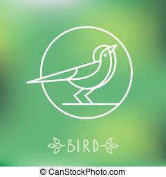style, vecteur, contour, icône, oiseau