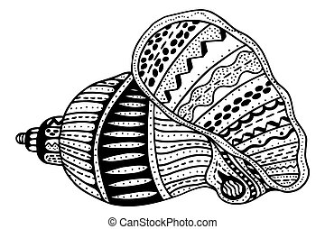 stylisé, coquille, zentangle