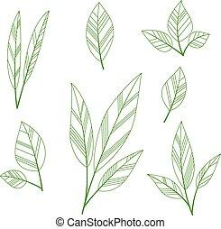 stylisé, feuilles