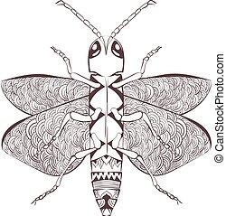 stylisé, insecte, zentangle, dessin animé, coléoptère